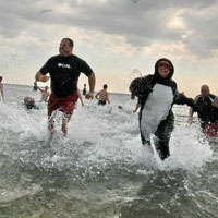 Long Island Polar Dip